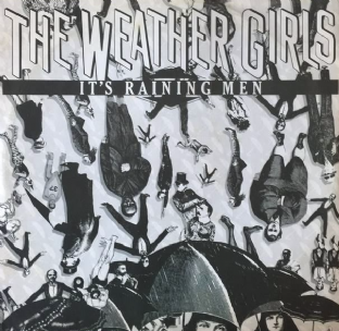 "Weather Girls ‎(The) - It's Raining Men (12"") (VG-/VG)"